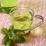 Green Tea Diet The Use of Green Tea Diet