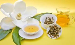 super green tea diet A Review of Super Green Tea Diet